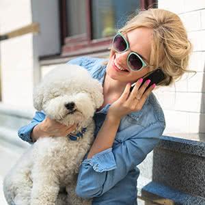 Berufshaftpflichtversicherung Hundetrainer - Angebote vergleichen