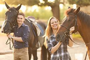 Pferdehalterhaftpflicht - Pferde und Ihre Besitzer